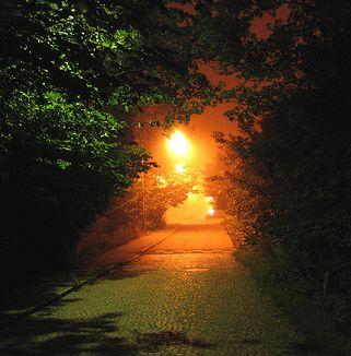drumul-spre-lumina.jpg