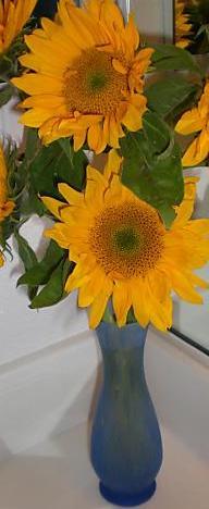 floare-de-soare.jpeg