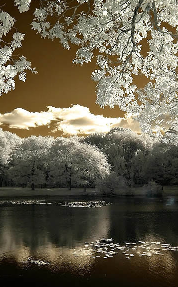 iarna-in-culori-de-primavara