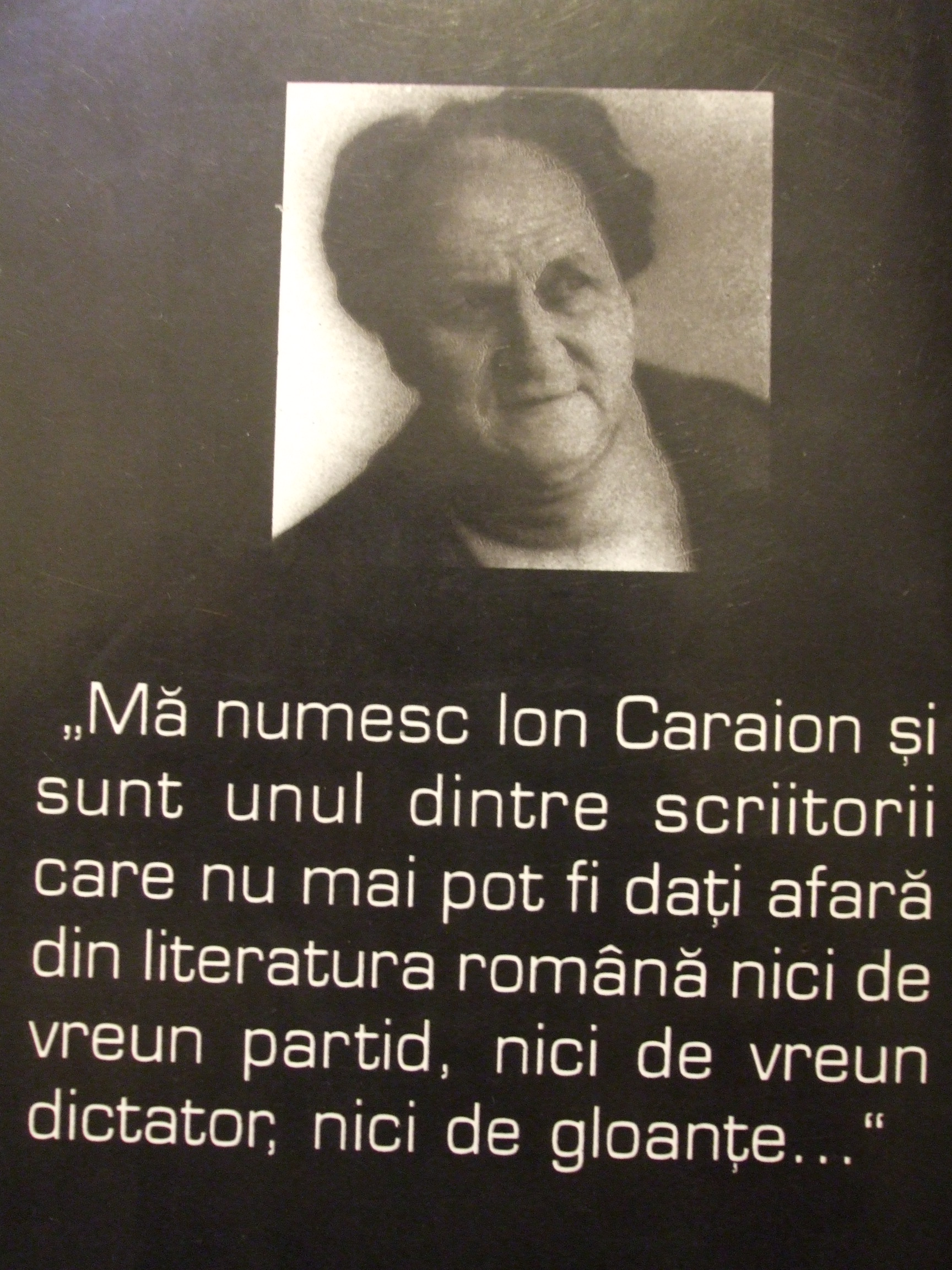 ion-caraion1