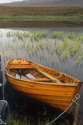 barca unor tarmuri trecute