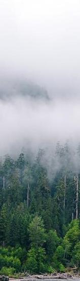 de la pamant pana in nori