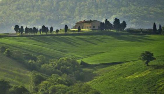 o casa intre mult verde