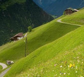 o vara cu iarba